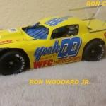 RON WOODARD JR GALLERY